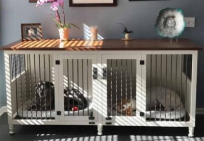 dog crate organized